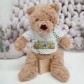 Personalised-Teddy-Bear